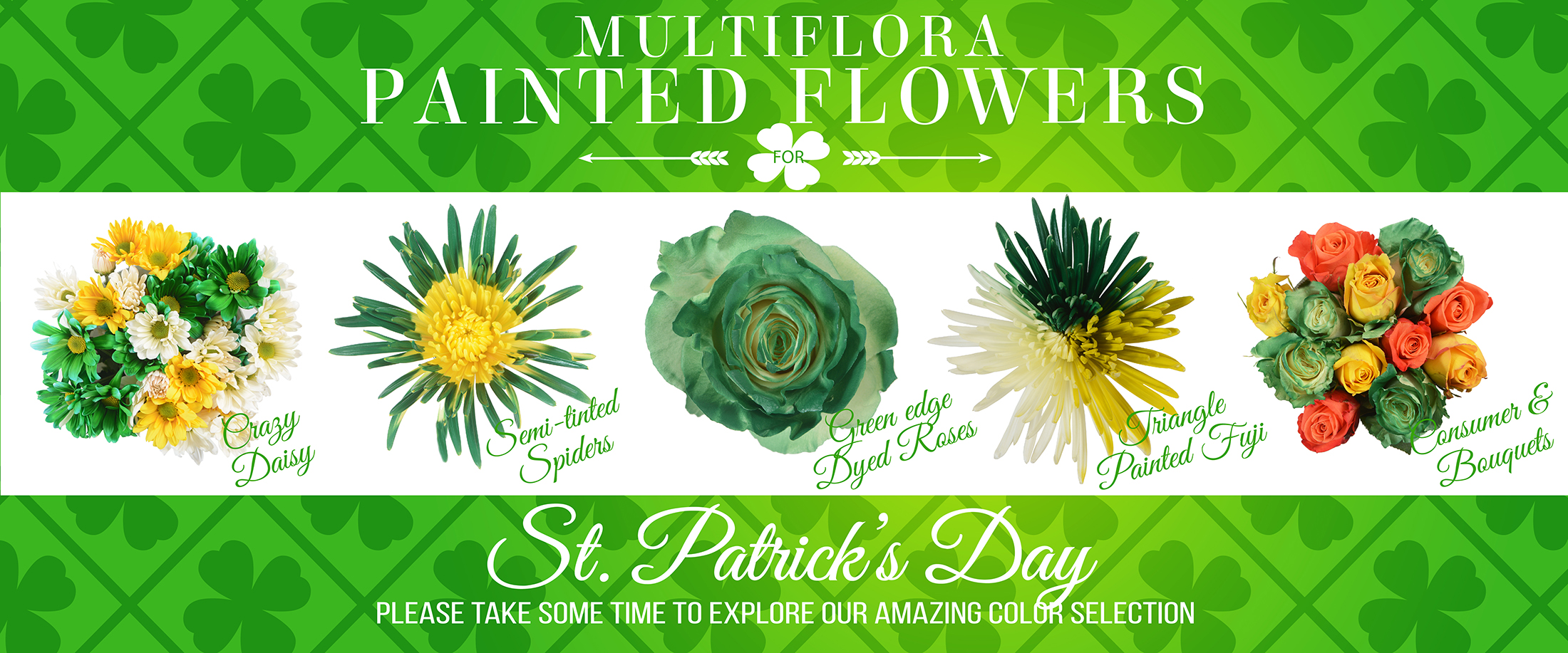 ST.-PATRICK´S-TINTED-FLOWERS-WEB