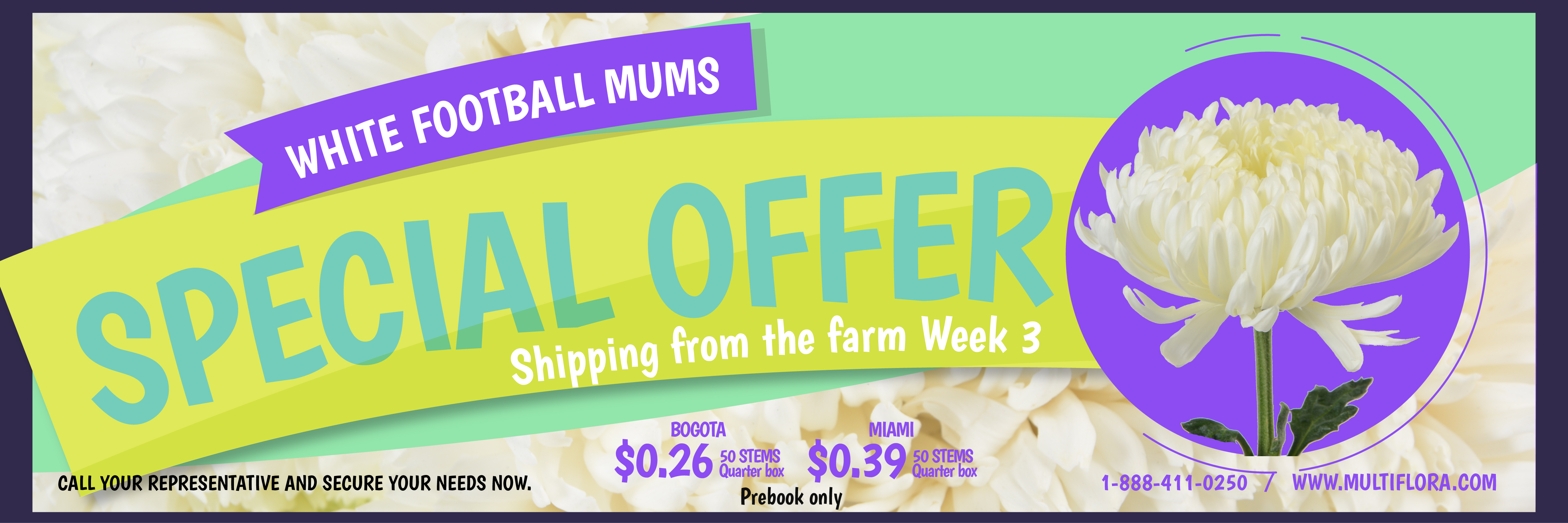Special-Offer-week-3-Football-white-web-01